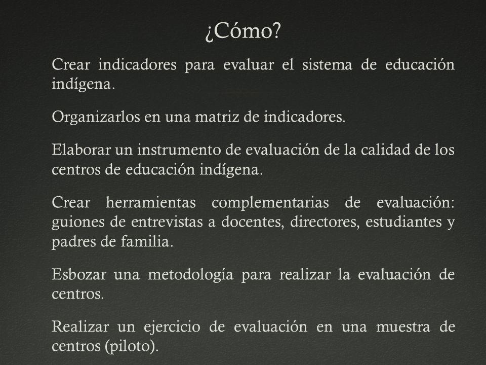 ¿Cómo? Crear indicadores para evaluar el sistema de educación indígena. Organizarlos en una matriz de indicadores. Elaborar un instrumento de evaluaci