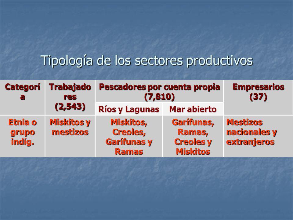 Tipología de los sectores productivos Categorí a Trabajado res (2,543) Pescadores por cuenta propia (7,810) Empresarios (37) Ríos y Lagunas Mar abiert