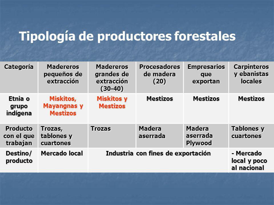 Categoría Madereros pequeños de extracción Madereros grandes de extracción (30-40)Procesadores de madera (20) Empresarios que exportan Carpinteros y e