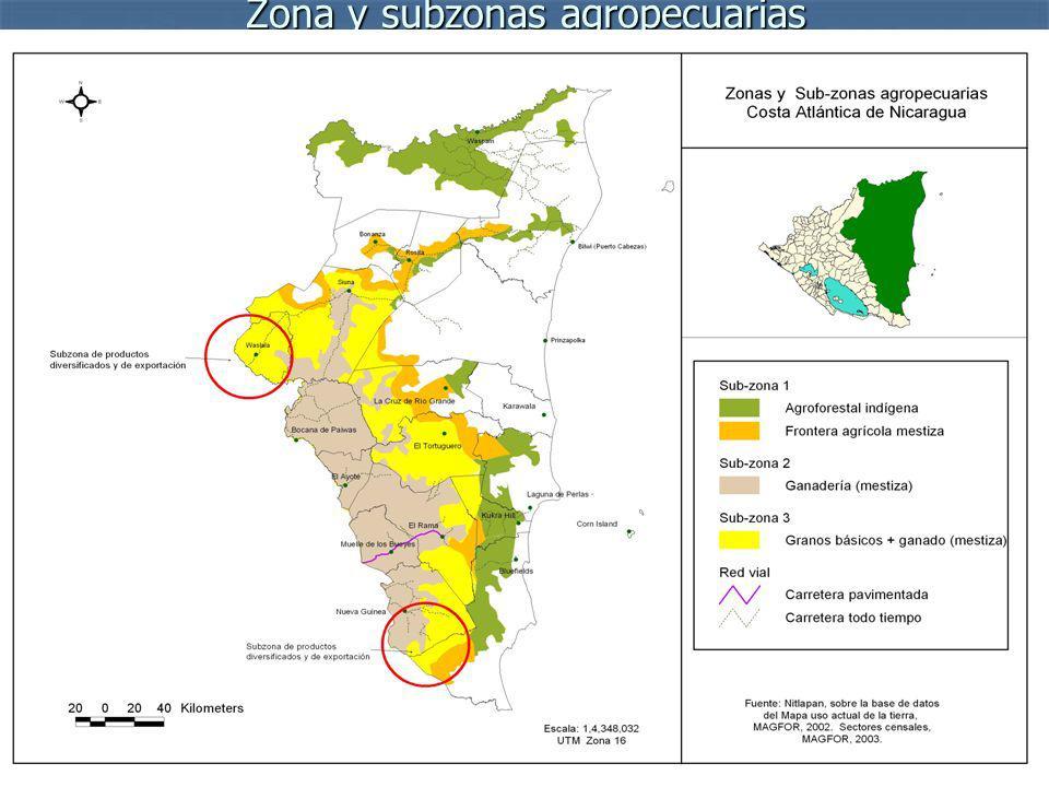 Zona y subzonas agropecuarias