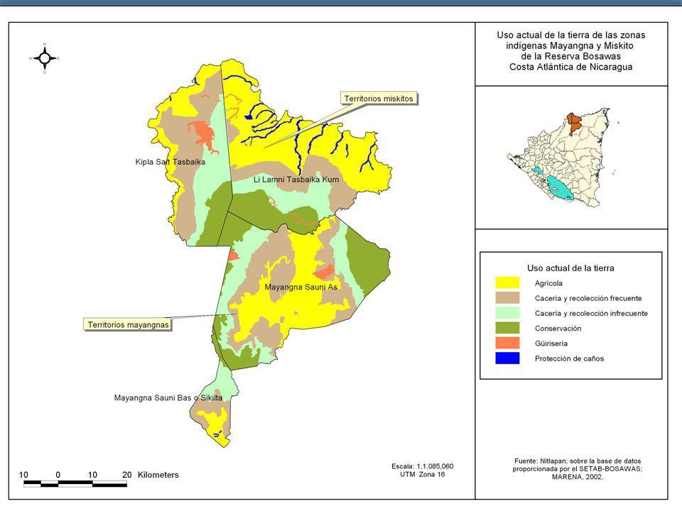 REGIONES AUTONOMASTOTAL SUB-SECTORESRAANRAASREGION NACIONA L% Agrícola 316,6 401,2 717,8 5.431,913% Ganadero 109,4 468,0 577,4 2.691,321% Forestal 130,5 17,6 148,0 461,132% Pesca 65,7 230,2 295,9 689,343% Sub-total 622,2 1.116,9 1.739,1 9.273,619% Minas 49,5 363,314% Total 671,7 1.116,9 1.788,6 9.636,919% %38%62% TOTAL ECONOMIA 1.788,60 50.118,004%