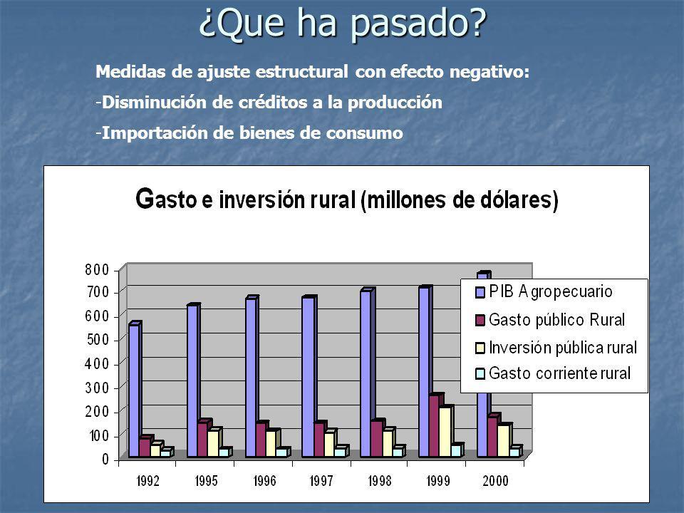 ¿Que ha pasado? Medidas de ajuste estructural con efecto negativo: -Disminución de créditos a la producción -Importación de bienes de consumo