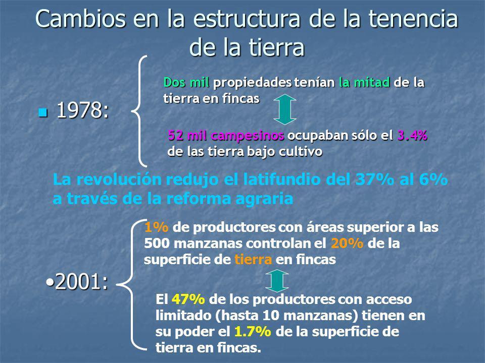 Cambios en la estructura de la tenencia de la tierra 1978: 1978: Dos mil propiedades tenían la mitad de la tierra en fincas 52 mil campesinos ocupaban