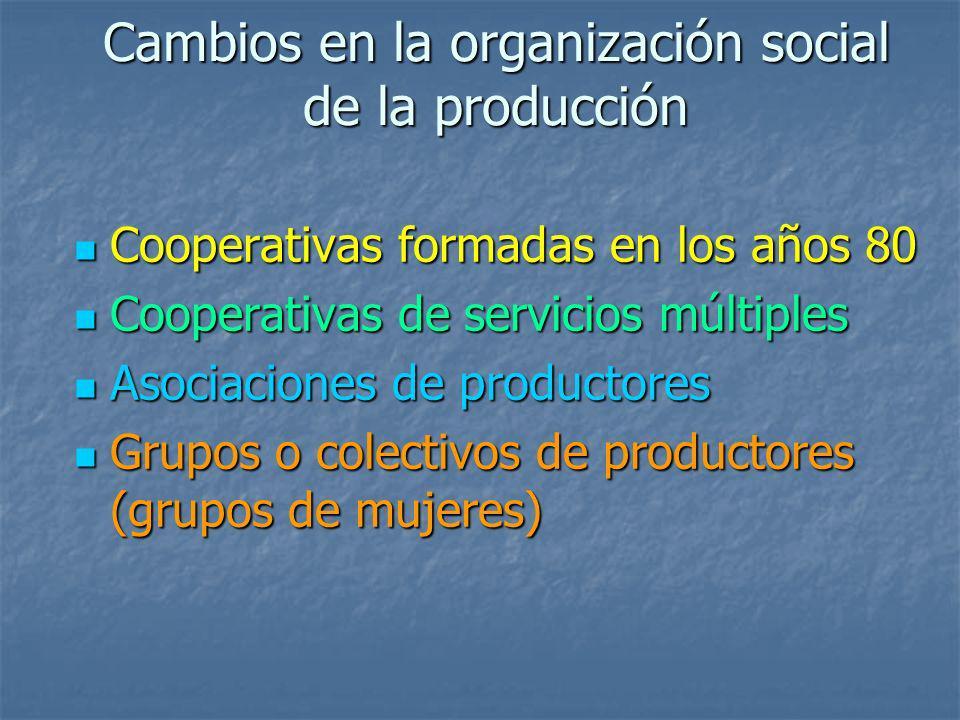 Cambios en la organización social de la producción Cooperativas formadas en los años 80 Cooperativas formadas en los años 80 Cooperativas de servicios