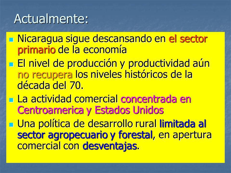 Actualmente: Nicaragua sigue descansando en el sector primario de la economía Nicaragua sigue descansando en el sector primario de la economía El nive