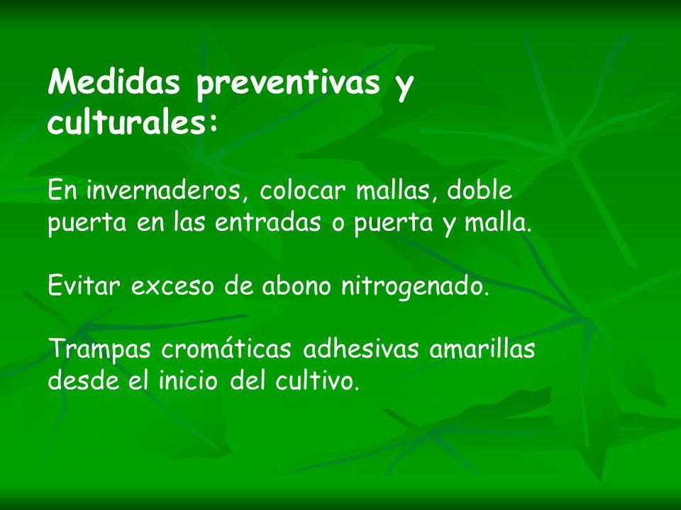 Medidas preventivas y culturales: En invernaderos, colocar mallas, doble puerta en las entradas o puerta y malla. Evitar exceso de abono nitrogenado.