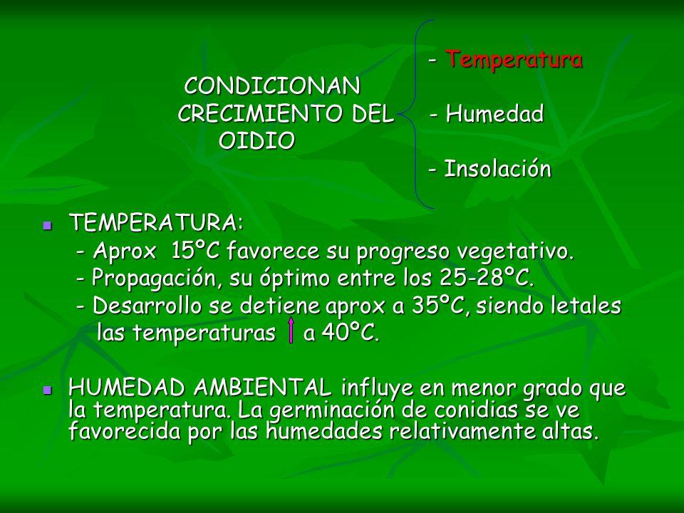 - Temperatura - Temperatura CONDICIONAN CONDICIONAN CRECIMIENTO DEL - Humedad CRECIMIENTO DEL - Humedad OIDIO OIDIO - Insolación - Insolación TEMPERAT