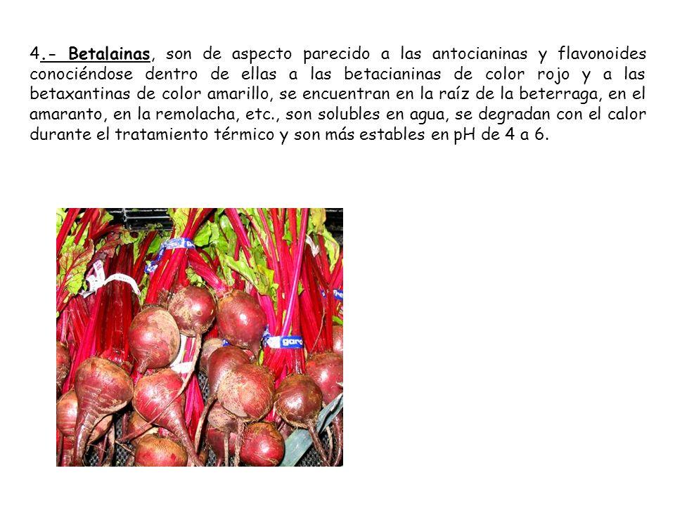 4.- Betalainas, son de aspecto parecido a las antocianinas y flavonoides conociéndose dentro de ellas a las betacianinas de color rojo y a las betaxan