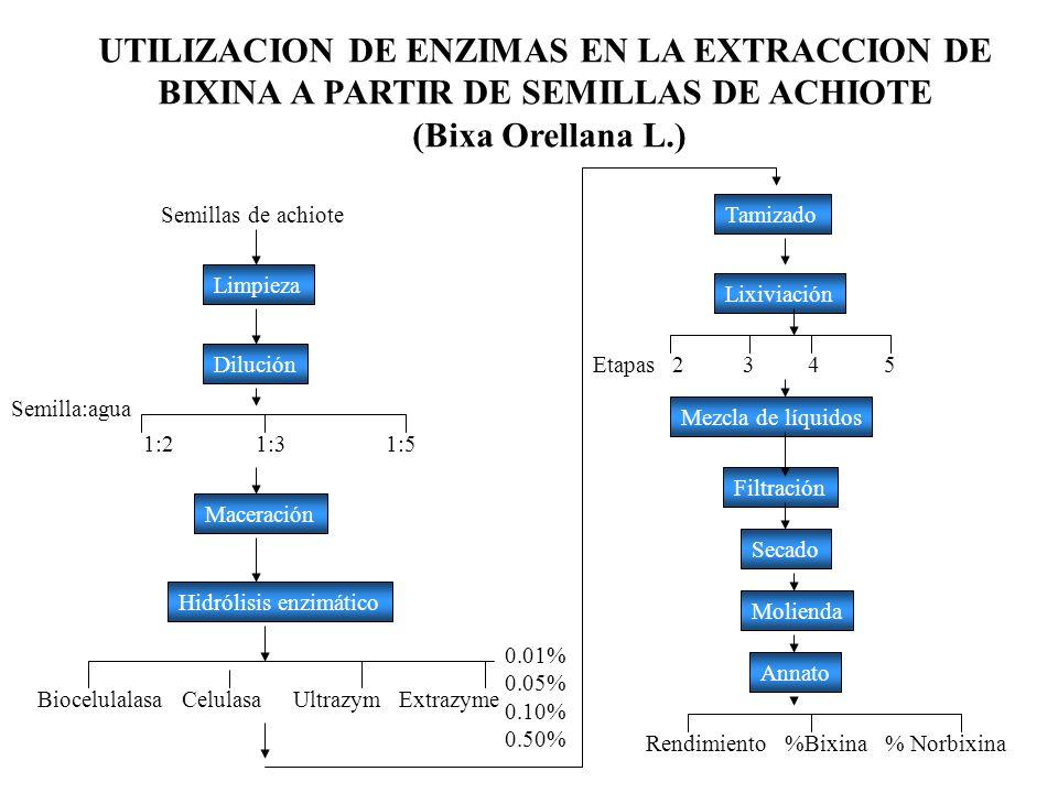 UTILIZACION DE ENZIMAS EN LA EXTRACCION DE BIXINA A PARTIR DE SEMILLAS DE ACHIOTE (Bixa Orellana L.) Semillas de achiote Limpieza Dilución 1:2 1:3 1:5