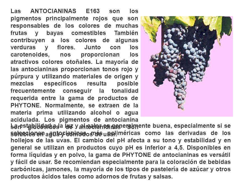 Las ANTOCIANINAS E163 son los pigmentos principalmente rojos que son responsables de los colores de muchas frutas y bayas comestibles También contribu