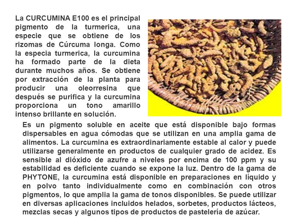 La CURCUMINA E100 es el principal pigmento de la turmerica, una especie que se obtiene de los rizomas de Cúrcuma longa. Como la especia turmerica, la