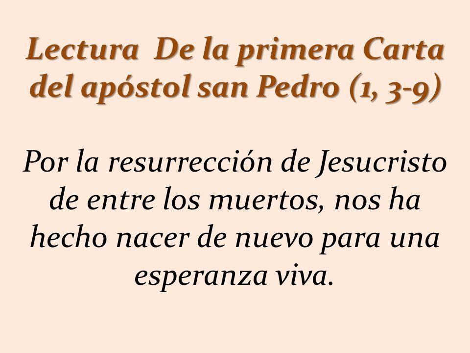 Lectura De la primera Carta del apóstol san Pedro (1, 3-9) Por la resurrección de Jesucristo de entre los muertos, nos ha hecho nacer de nuevo para una esperanza viva.