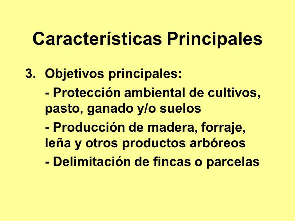 Características Principales 3.Objetivos principales: - Protección ambiental de cultivos, pasto, ganado y/o suelos - Producción de madera, forraje, leña y otros productos arbóreos - Delimitación de fincas o parcelas