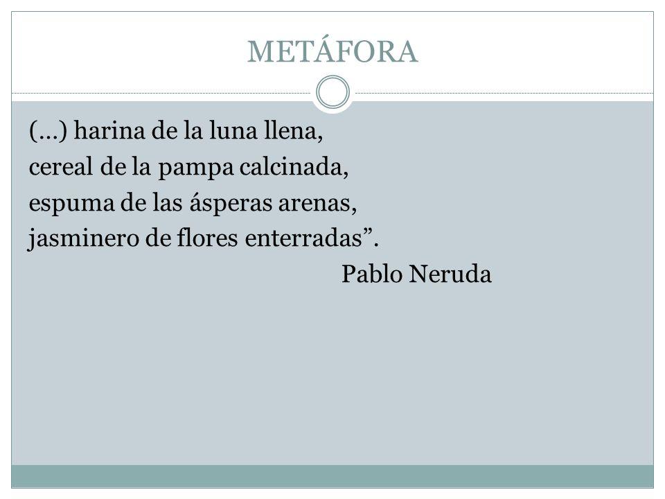 METÁFORA (…) harina de la luna llena, cereal de la pampa calcinada, espuma de las ásperas arenas, jasminero de flores enterradas. Pablo Neruda