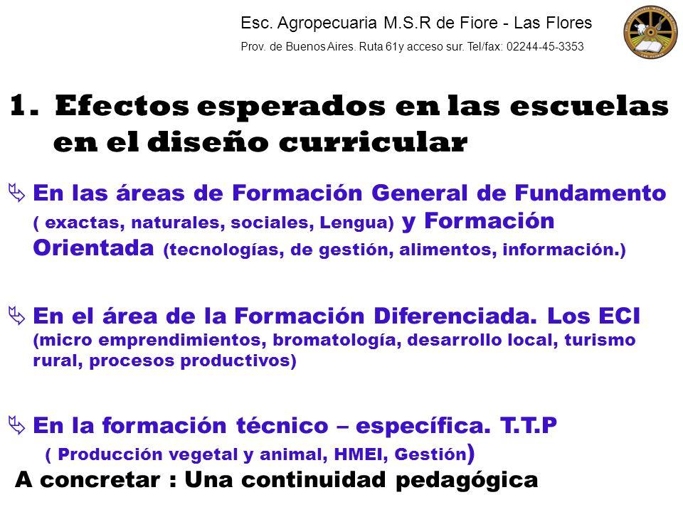 1. Efectos esperados en las escuelas en el diseño curricular En las áreas de Formación General de Fundamento ( exactas, naturales, sociales, Lengua) y