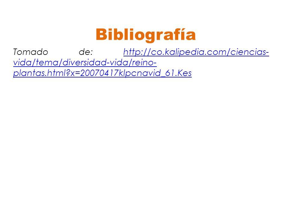 Bibliografía Tomado de: http://co.kalipedia.com/ciencias- vida/tema/diversidad-vida/reino- plantas.html?x=20070417klpcnavid_61.Keshttp://co.kalipedia.