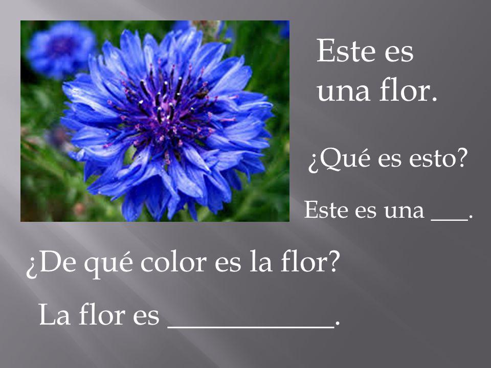 Este es una flor. ¿Qué es esto? ¿De qué color es la flor? Este es una ___. La flor es ___________.