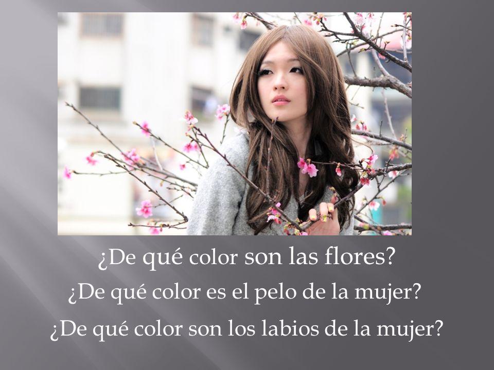 ¿ De qué color son las flores? ¿De qué color es el pelo de la mujer? ¿De qué color son los labios de la mujer?