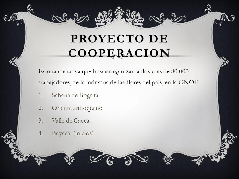 COMO COLABORA.1.FORMACION DE LIDERES. 2.ORGANIZACION SINDICAL.