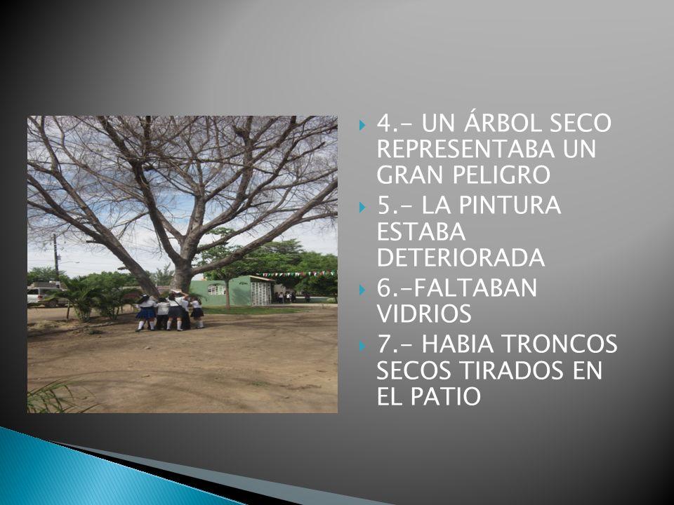 8.-LOS ÁRBOLES ESTABAN MUY ALTOS 9.- LA MALEZA CRECIÓ CON LA LLUVIAS 10.- HABÍA MOBILIARIO ROTO 11.- ÁREAS PARA JUGAR REDUCIDAS 12.- NO TENIAMOS JARDIN.