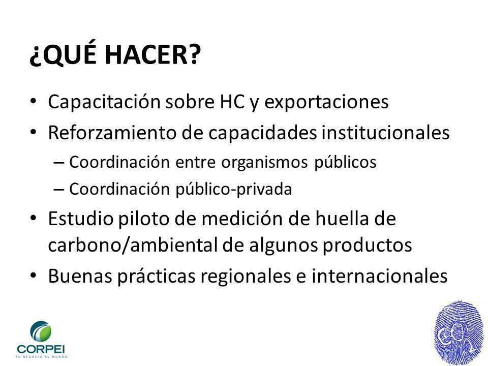 ¿QUÉ HACER? Capacitación sobre HC y exportaciones Reforzamiento de capacidades institucionales – Coordinación entre organismos públicos – Coordinación