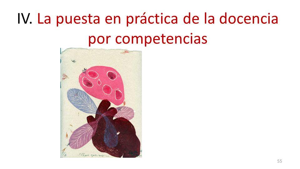 55 IV. La puesta en práctica de la docencia por competencias