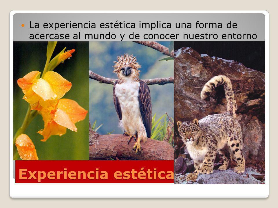 Experiencia estética La experiencia estética implica una forma de acercase al mundo y de conocer nuestro entorno