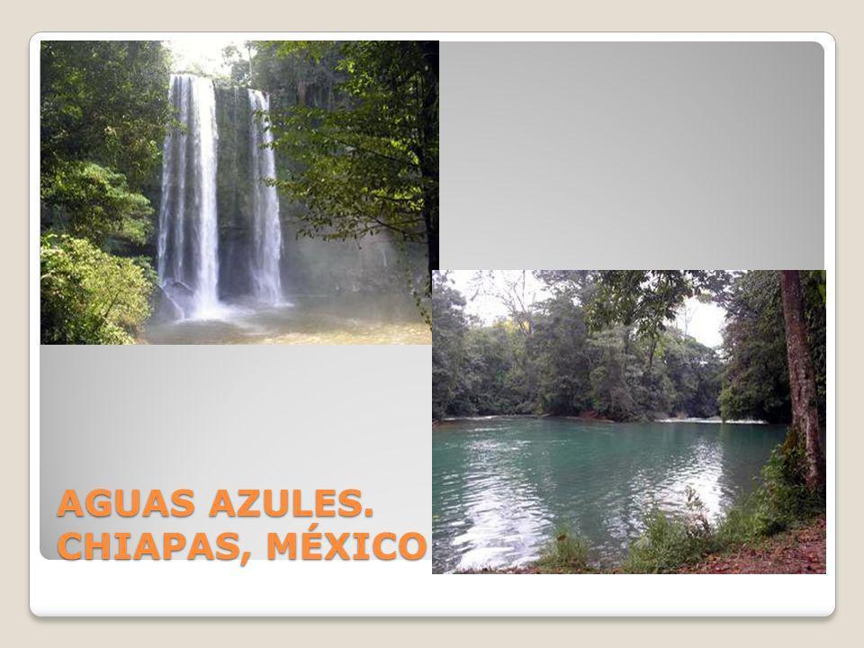 AGUAS AZULES. CHIAPAS, MÉXICO
