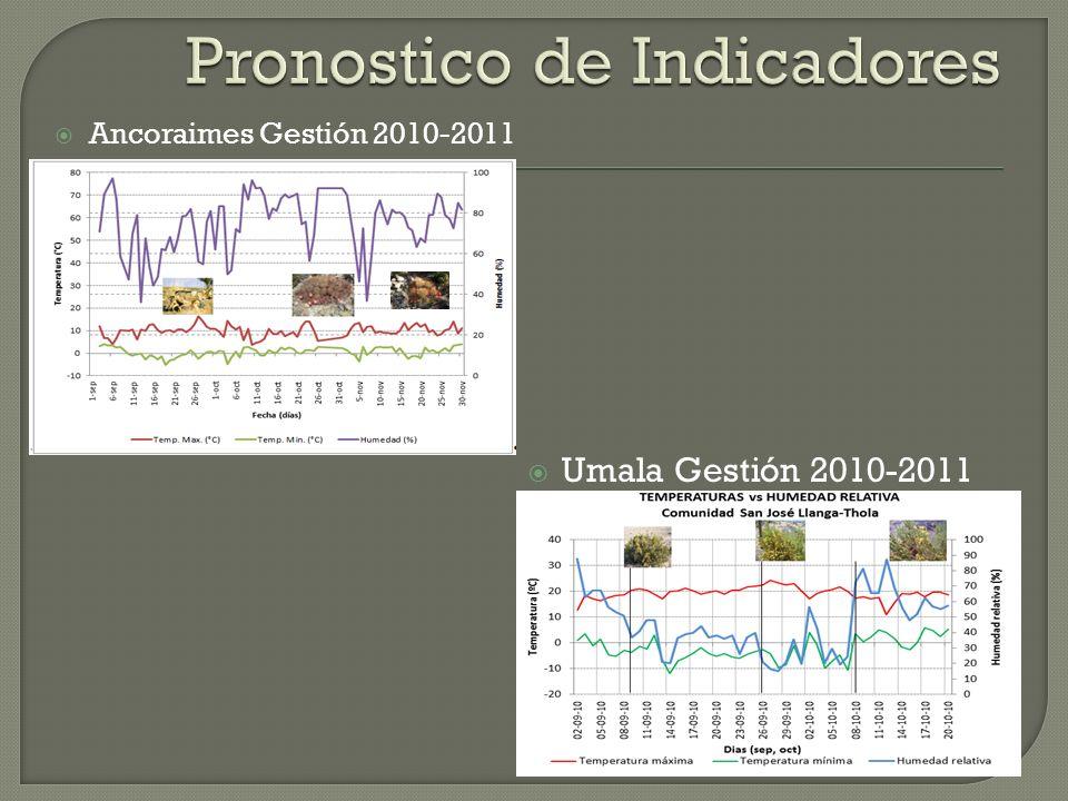Ancoraimes Gestión 2010-2011 Umala Gestión 2010-2011