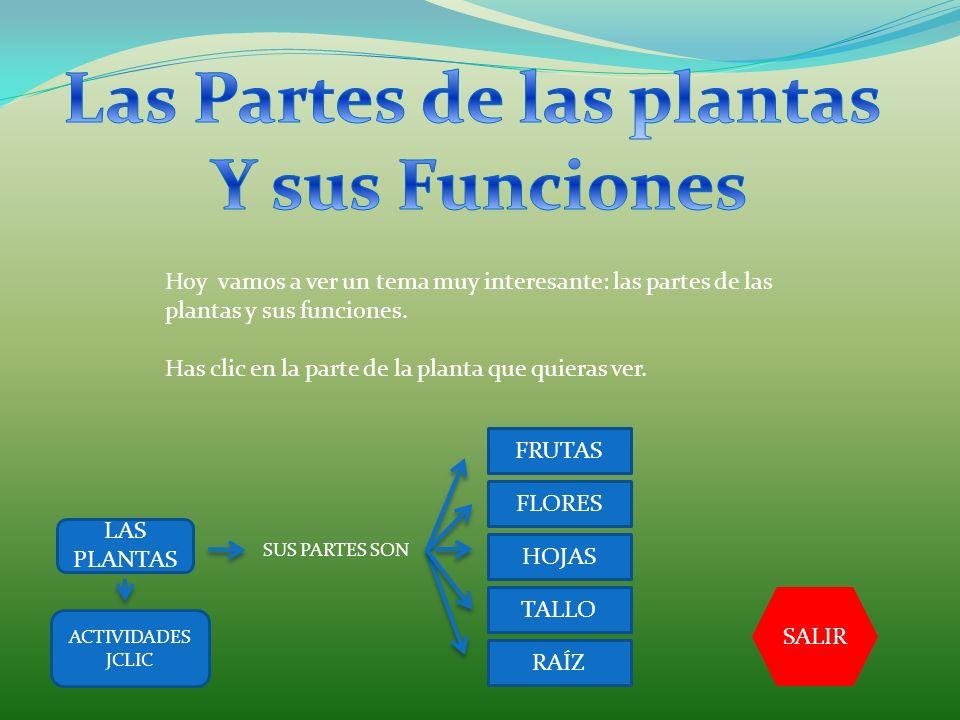 Hoy vamos a ver un tema muy interesante: las partes de las plantas y sus funciones. Has clic en la parte de la planta que quieras ver. LAS PLANTAS SUS