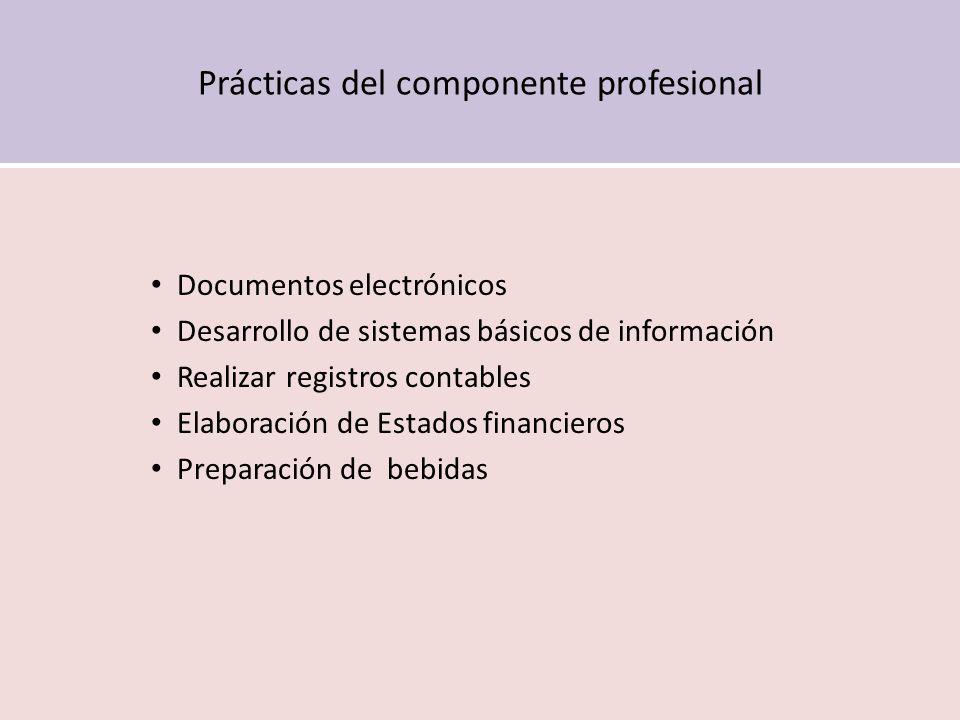 Prácticas del componente profesional Documentos electrónicos Desarrollo de sistemas básicos de información Realizar registros contables Elaboración de