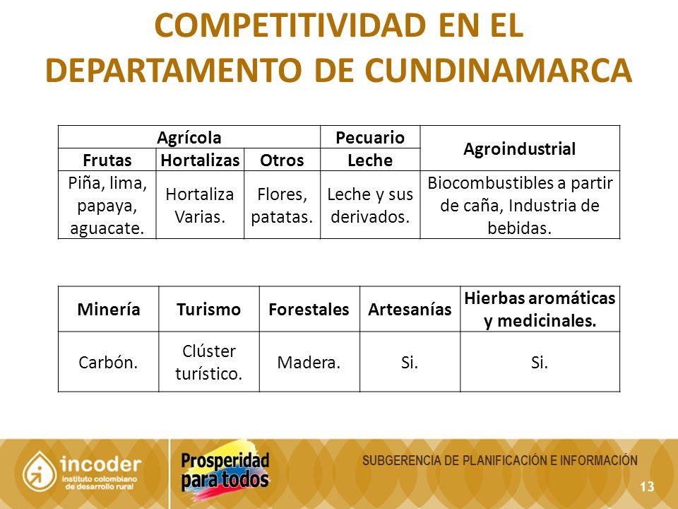 13 SUBGERENCIA DE PLANIFICACIÓN E INFORMACIÓN COMPETITIVIDAD EN EL DEPARTAMENTO DE CUNDINAMARCA AgrícolaPecuario Agroindustrial FrutasHortalizasOtrosLeche Piña, lima, papaya, aguacate.