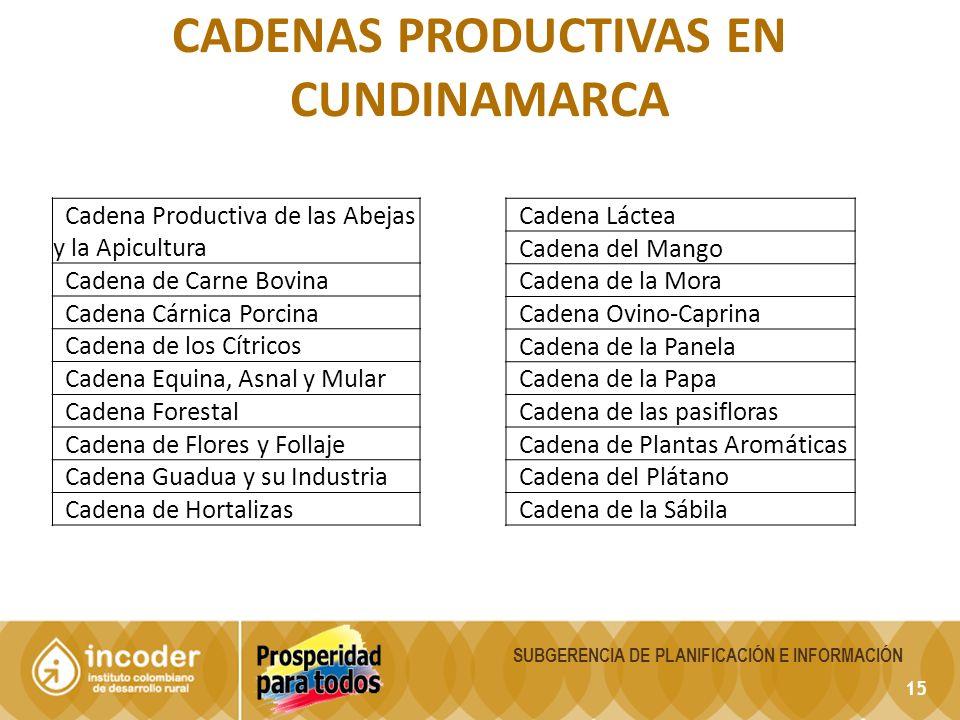 15 CADENAS PRODUCTIVAS EN CUNDINAMARCA Cadena Productiva de las Abejas y la Apicultura Cadena de Carne Bovina Cadena Cárnica Porcina Cadena de los Cít