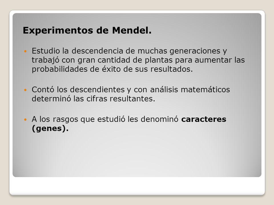 Experimentos de Mendel. Estudio la descendencia de muchas generaciones y trabajó con gran cantidad de plantas para aumentar las probabilidades de éxit