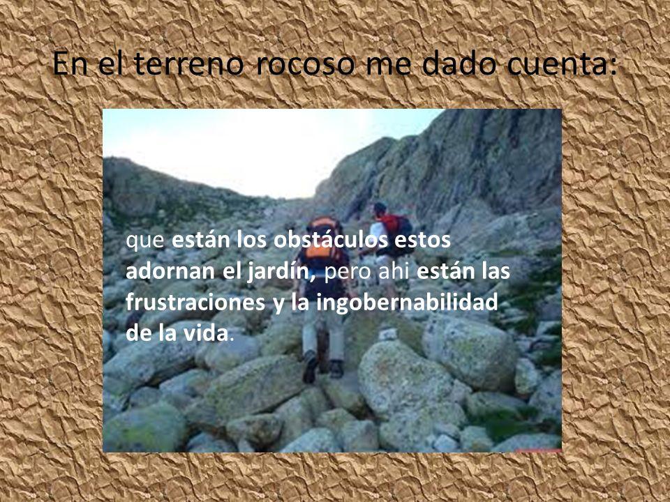 En el terreno rocoso me dado cuenta: que están los obstáculos estos adornan el jardín, pero ahi están las frustraciones y la ingobernabilidad de la vi