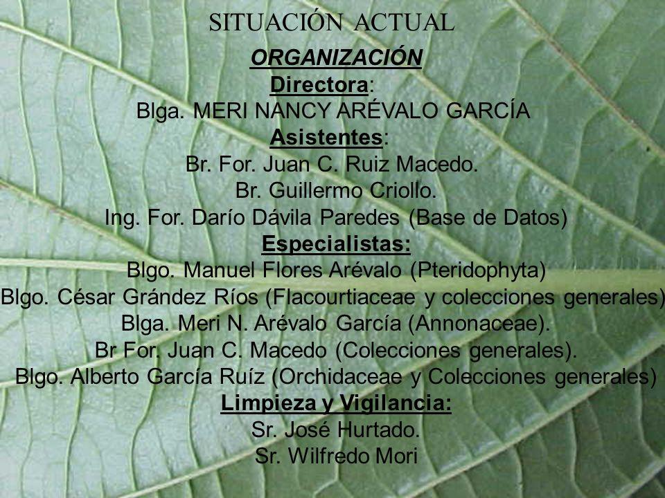 El Herbarium Amazonense tiene una Base de Datos en Acces en la cual se han registrado 29,635 muestras botánicas, incluyendo: Hongos, Briophytas, Pteridophytas, Gimnospermas y Angispermas; incluidas en 216 familias, 1557 géneros.