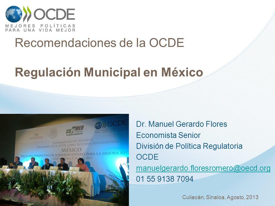 Dr. Manuel Gerardo Flores Economista Senior División de Política Regulatoria OCDE manuelgerardo.floresromero@oecd.org 01 55 9138 7094 Recomendaciones