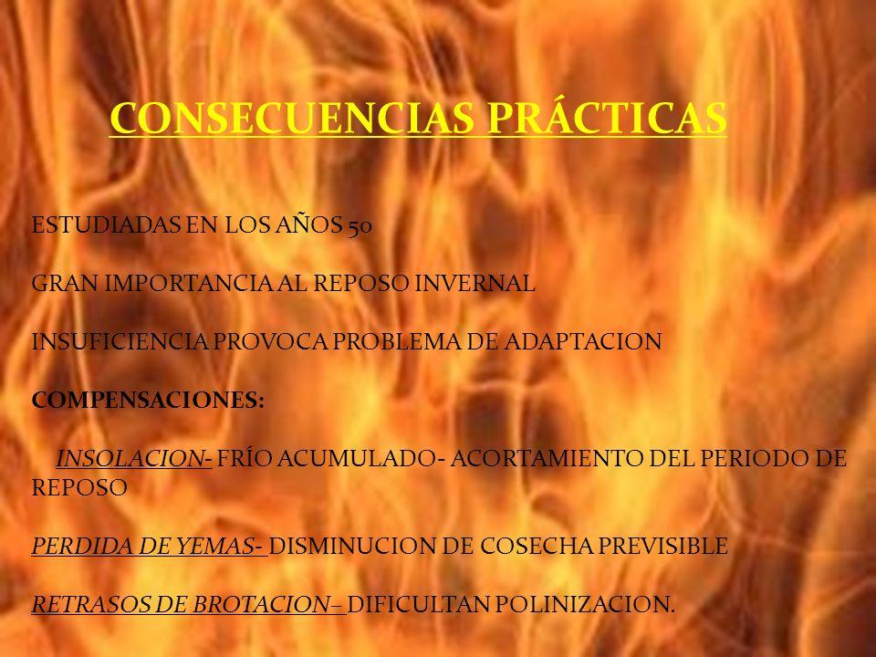 ESTUDIADAS EN LOS AÑOS 50 GRAN IMPORTANCIA AL REPOSO INVERNAL INSUFICIENCIA PROVOCA PROBLEMA DE ADAPTACION COMPENSACIONES: INSOLACION- FRÍO ACUMULADO- ACORTAMIENTO DEL PERIODO DE REPOSO PERDIDA DE YEMAS- DISMINUCION DE COSECHA PREVISIBLE RETRASOS DE BROTACION– DIFICULTAN POLINIZACION.
