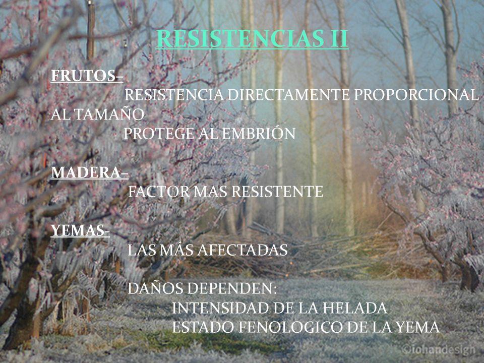 FRUTOS– RESISTENCIA DIRECTAMENTE PROPORCIONAL AL TAMAÑO PROTEGE AL EMBRIÓN MADERA– FACTOR MAS RESISTENTE YEMAS- LAS MÁS AFECTADAS DAÑOS DEPENDEN: INTENSIDAD DE LA HELADA ESTADO FENOLOGICO DE LA YEMA RESISTENCIAS II