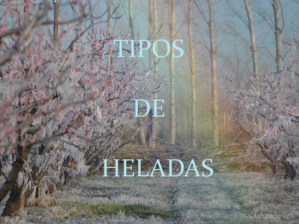 TIPOS DE HELADAS