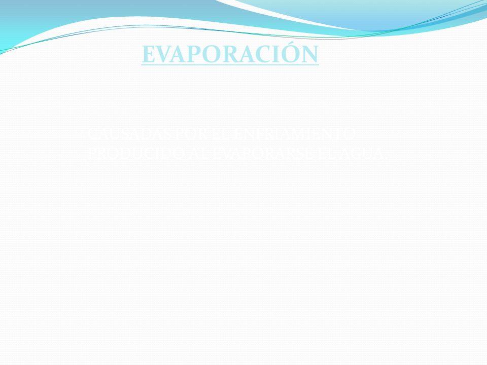 CAUSADAS POR EL ENFRIAMIENTO PRODUCIDO AL EVAPORARSE EL AGUA. EVAPORACIÓN