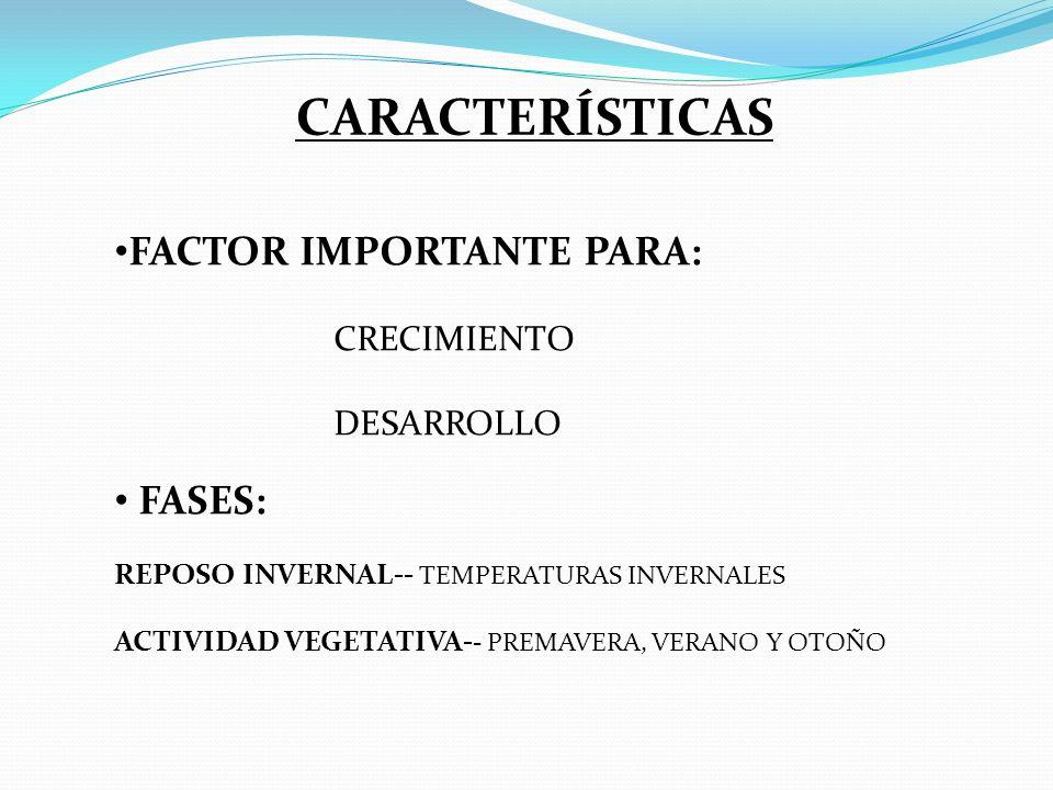 FACTOR IMPORTANTE PARA: CRECIMIENTO DESARROLLO FASES: REPOSO INVERNAL-- TEMPERATURAS INVERNALES ACTIVIDAD VEGETATIVA- - PREMAVERA, VERANO Y OTOÑO CARACTERÍSTICAS