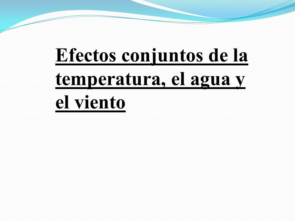 Efectos conjuntos de la temperatura, el agua y el viento