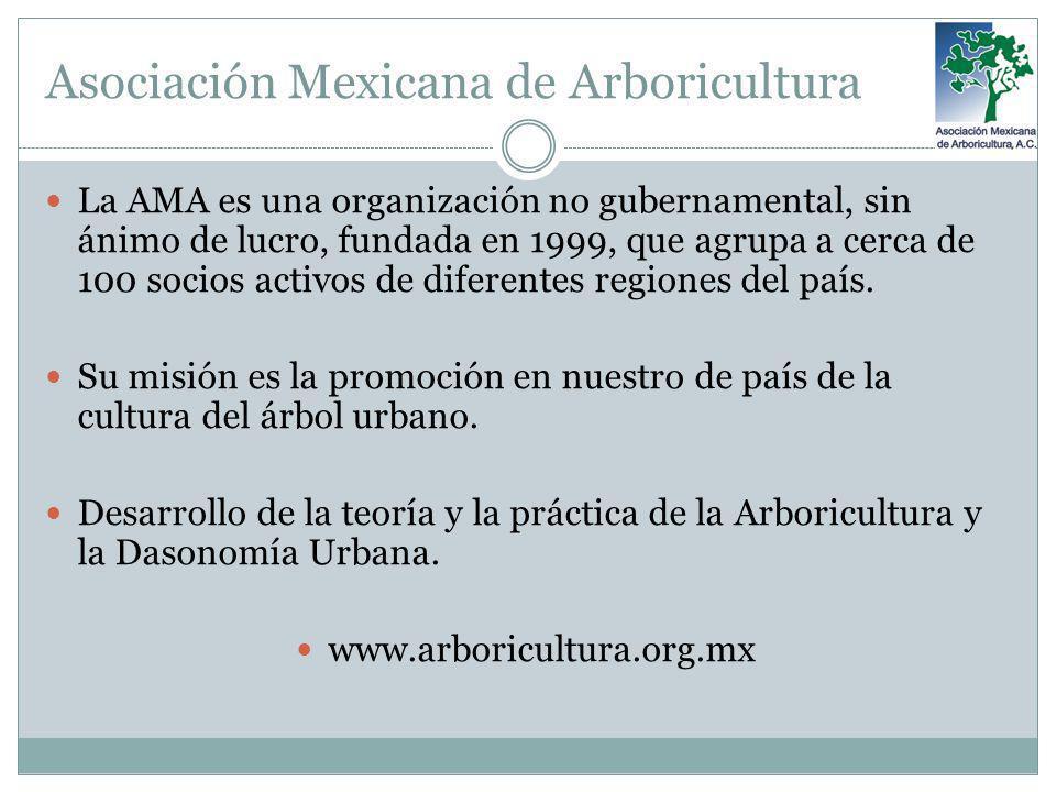 Asociación Mexicana de Arboricultura La AMA es una organización no gubernamental, sin ánimo de lucro, fundada en 1999, que agrupa a cerca de 100 socio