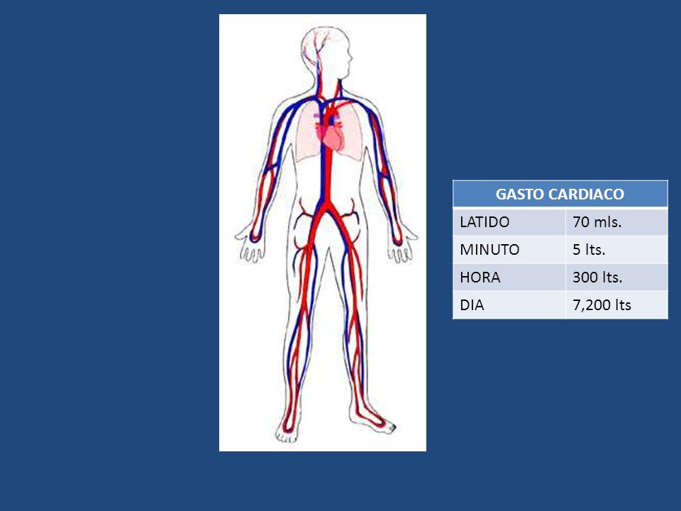 GASTO CARDIACO LATIDO70 mls. MINUTO5 lts. HORA300 lts. DIA7,200 lts