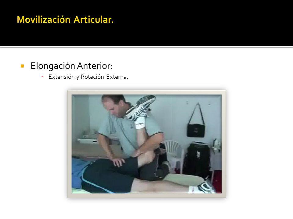 Elongación Anterior: Extensión y Rotación Externa.