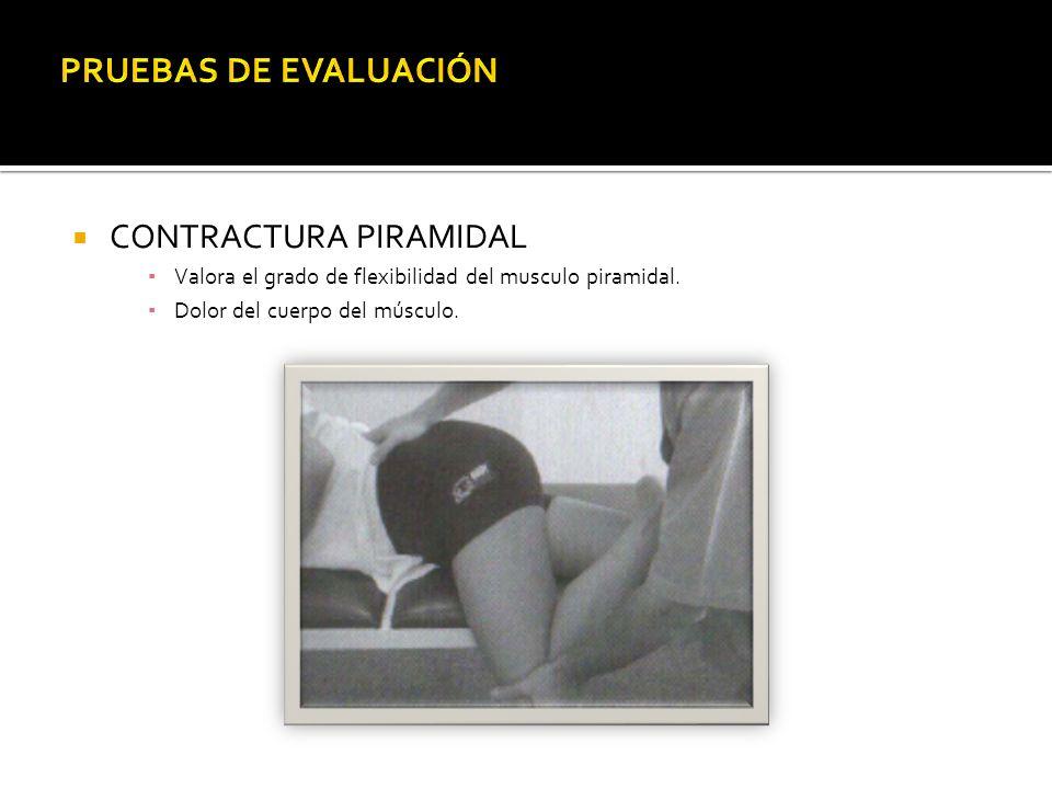 CONTRACTURA PIRAMIDAL Valora el grado de flexibilidad del musculo piramidal. Dolor del cuerpo del músculo.