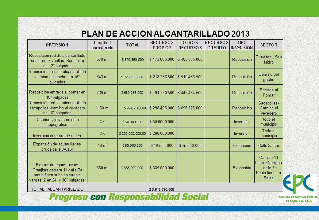 PLAN DE ACCIÓN PGIRS 2013
