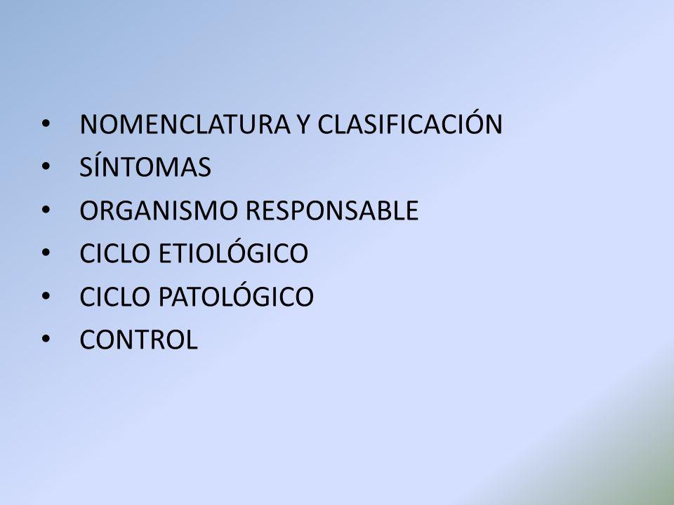 NOMENCLATURA Y CLASIFICACIÓN SÍNTOMAS ORGANISMO RESPONSABLE CICLO ETIOLÓGICO CICLO PATOLÓGICO CONTROL
