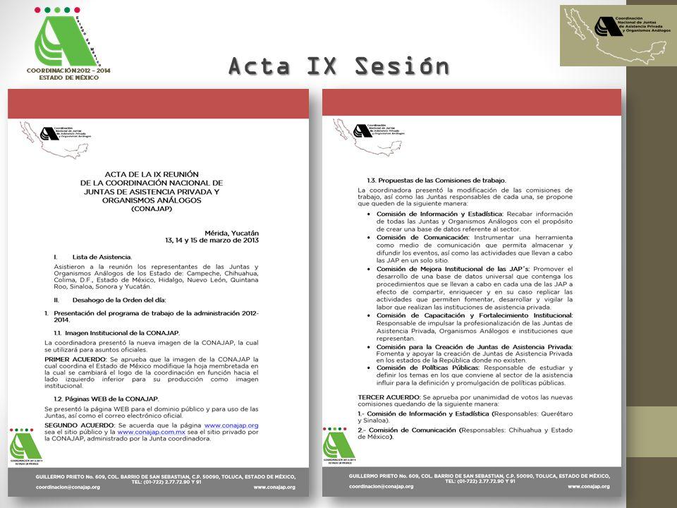 Acta IX Sesión